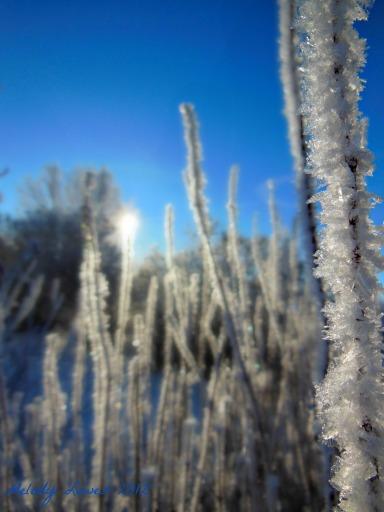 frosty spires