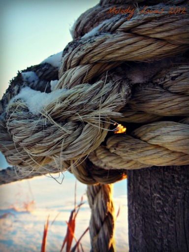 sunset rope