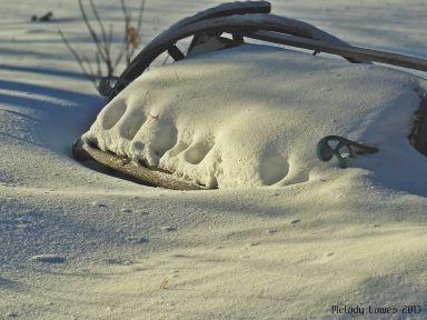 snowedinbench