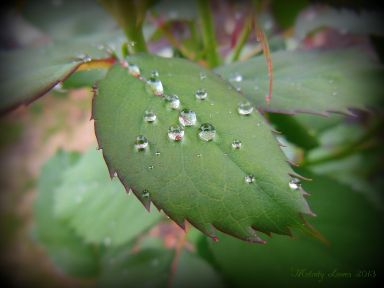 rainbeads.jpg